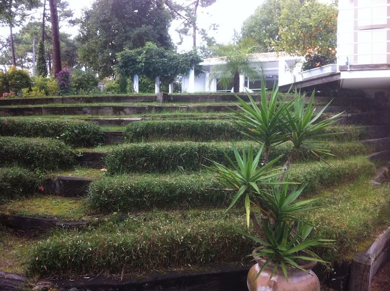 Am nagement et entretien d 39 espaces verts d 39 entreprise sur for Entretien jardin 76