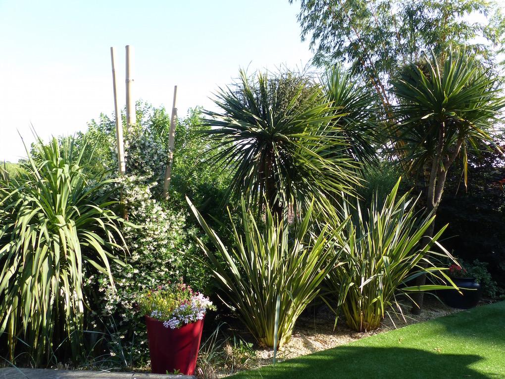 cr ation d 39 une ambiance exotique sur le bassin d 39 arcachon paysagiste bordeaux jardins eden. Black Bedroom Furniture Sets. Home Design Ideas