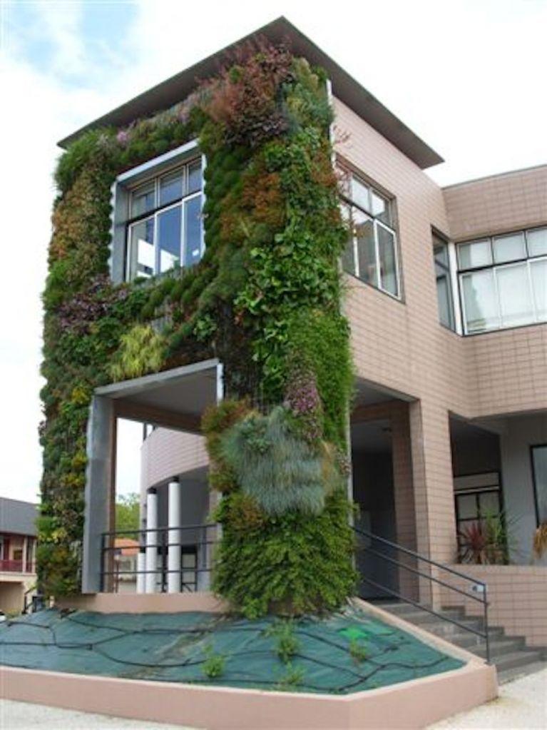Réalisation d'un mur végétal en gironde 33 - Aménagement de jardins paysagers et d'espaces verts ...