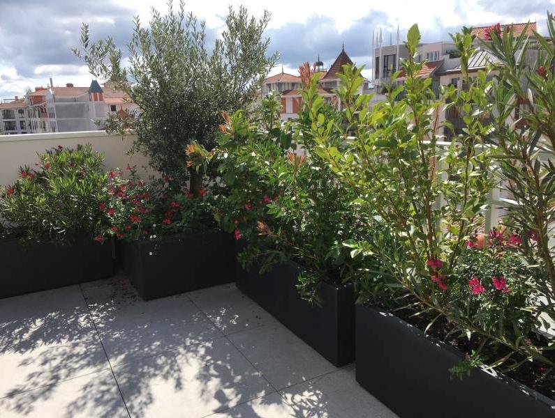 Am nagement paysager pour jardin de petite surface gironde les jardins d 39 eden - Amenagement jardin petite surface ...