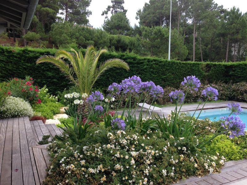 Am nagement paysager aux abords d 39 une terrasse bassin d for Entretien jardin gujan mestras