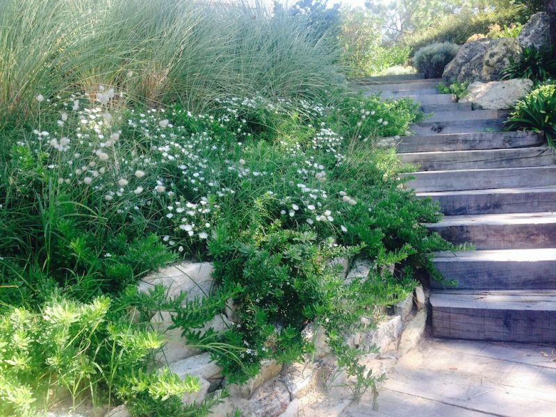 Escalier bois et ses abords paysager en gironde for Entretien jardin gironde