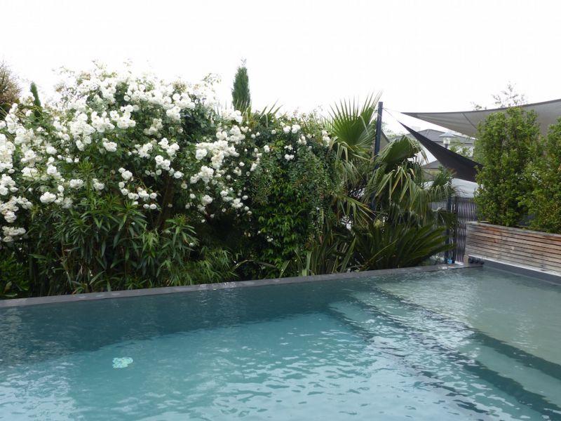 Am nagement paysager aux abords d 39 une piscine bordeaux for Amenagement bord de piscine