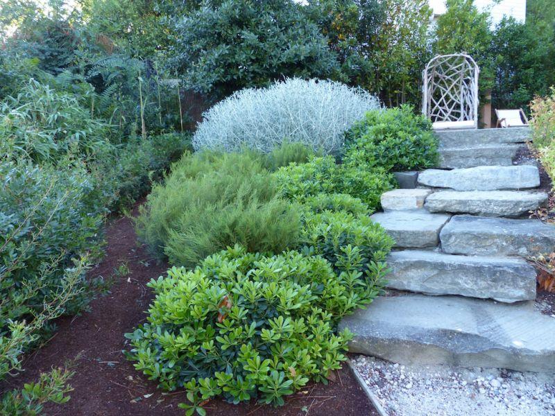R alisation d 39 un escalier en pierre sur le bassin d for Entretien jardin gujan mestras